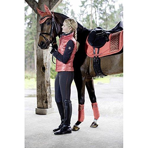 Streifen und Mütze anti-mouche Siena Rost Pferd