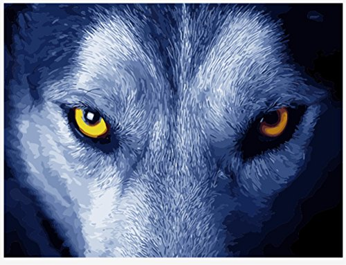 OBELLA Malen nach Zahlen Kits || Wolf 's Gaze Wolf Augen 50 x 40 cm || Malen nach Zahlen, DIGITAL Ölgemälde (Mit Rahmen) (Erwachsene Sexy Wolf)
