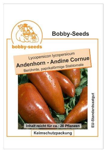 Bobby-Seeds Tomatensamen Andenhorn – Andine Cornue Portion