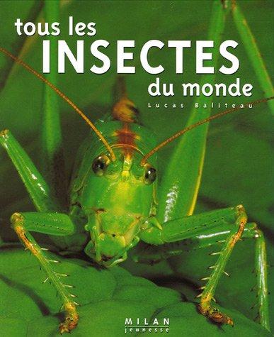 Tous les insectes du monde