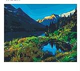 XIGZI Ciel Montagne Peinture De Bricolage par Chiffres Abstrait Lac Peinture À l'huile sur Toile Arbre Mur Art Cadeau 40X50 CM,sans Cadre,I