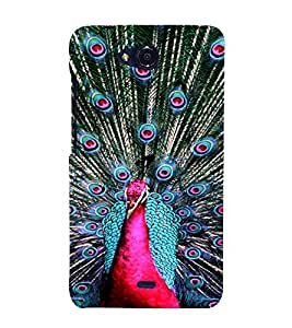 PrintVisa Peacock Design 3D Hard Polycarbonate Designer Back Case Cover for Micromax Canvas Play Q355