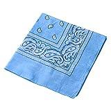 Pañuelo para la cabeza multifuncional estilo retro con estampado de cachemira; también se puede usar como diadema, velo, máscara para montar en bicicleta., hombre mujer, azul celeste
