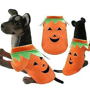 Finoki vêtements pour chien , dog clothes halloween pour Costumes d'Halloween