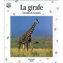 La Girafe, sentinelle de la savane