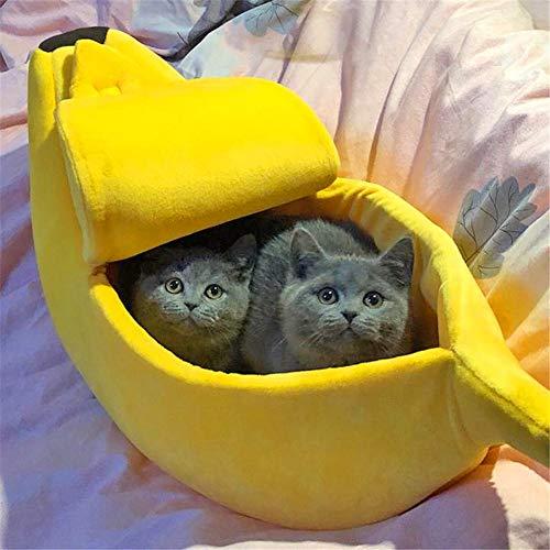 SHSH Casa de Cama para Gato