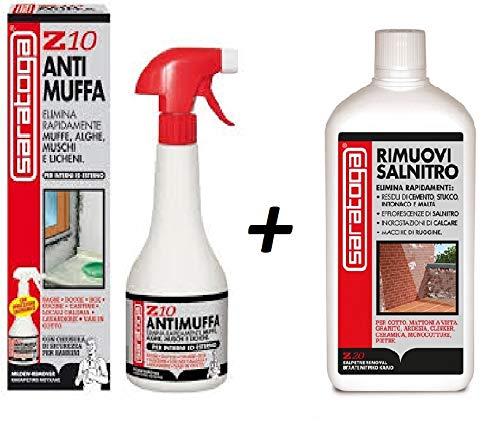 ANTIMUFFA Kit Composto da Z10 100ml e RIMUOVI SALNITRO 100 ml