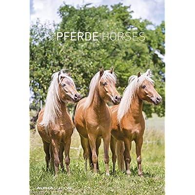 Calendario da muro 23,7 x 34 cm horses 2020