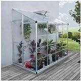 Palram Serre adossée Lean Hybrid Grow 3,05 m² - Hauteur : 2.25 m - Longueur : 2.44 m