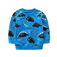BOBORA Boys Swater, Unisex Kids Long Sleeve Cotton Sweatshirt Children Autumn Dinosaur Sports Jumper Sweatshirts 2-8Years