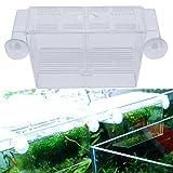 collectsound Boîte d'élevage de Poissons pour Aquarium Guppy Double élevage Éleveurs Boîte d'isolation Transparent