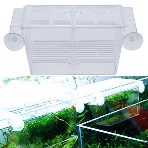 display08 Kunststoff-Fischzuchtkasten für Aquarien, schwimmend, isoliert