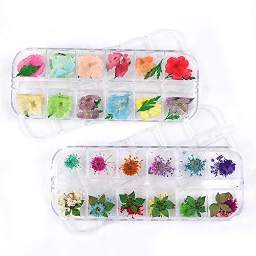 Pomeat 48pcs Nail Art Zubehör getrocknete Blumen Mini natürliche echte getrocknete Blumen Nail Art DIY Blume Dekorationen mit Box (Blumen Art Getrocknete Nail)