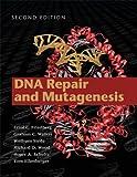 Image de DNA Repair and Mutagenesis