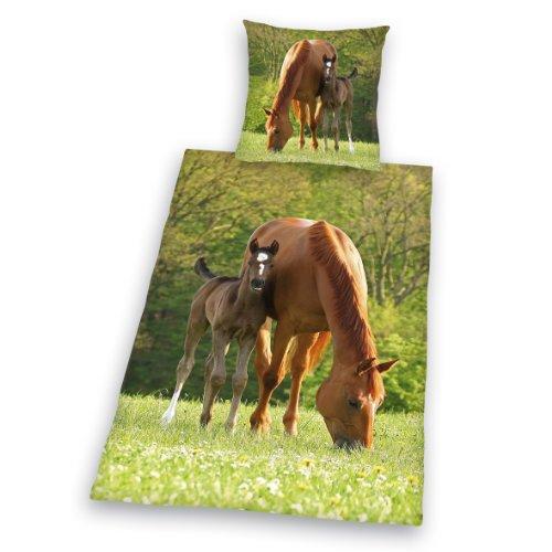 462428050 Pferde Bettwäsche, 80 x 80 cm + 135 x 200 cm, Biber / Flanell