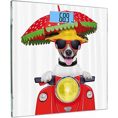 Ultra Slim Hochpräzise Sensoren Digitale Körperwaage Tierische Personenwaage aus gehärtetem Glas, Hund mit Hut und Sonnenbrille Motorrad fahren unter einem Regenschirm Lustiges Urlaubsbild, Orange