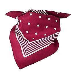 Burgundy With White Stripes & Polka Dot Bandana Neckerchief from Ties Planet