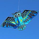 Kofun Cometa Larga Rainbow Kite Cometas Al Aire Libre Juguetes Voladores Cometa para Niños Niñoscometa para Niños Azul