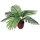 Leaf Design UK 50 centimetri artificiale Palm Tree Albero tropicale - Forma Bushy vaso in plastica nera Pot