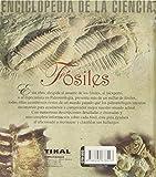 Image de Fosiles. (Enciclopedia De La Ciencia)
