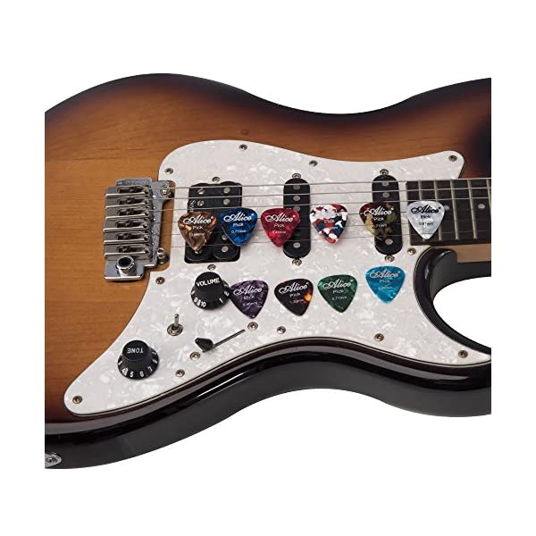 Rayzm Plettri Plectrum per Chitarra (Guitar plectrum Picks) 40 pcs in un Custodia Durable Cloth, Premium Assorted Celluloide Picks per chitarra Basso di diversi colori e 6 Spessore 0,46 / 0,71 / 0,81 / 0,96 / 1,20 / 1,50 mm