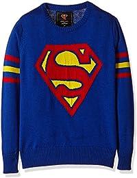 Superman Boys' Sweater