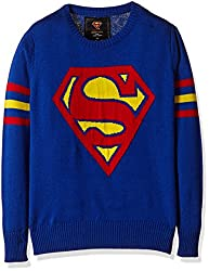 Superman Boys Sweater (SP1EBW1047_ROYAL BLUE_9/10)