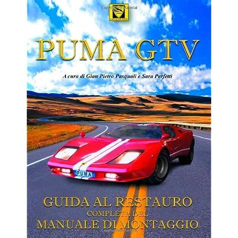Manuale Di Montaggio Puma Omologazione