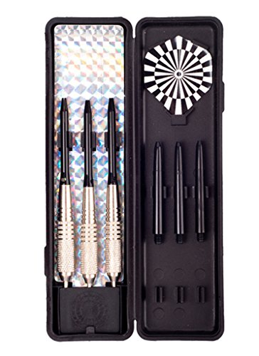 DulyMade 20g Silver Plated Steel Tip Bullet Shape Brass Dart Set with Dart Case and Spare Shafts