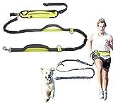 Hände frei Hundeleine Einziehbare Hundeleine und Wasserdichter Laufgürtel Für Walking, Wandern, Joggen mit dem Hund (Grün Fluoreszierend)