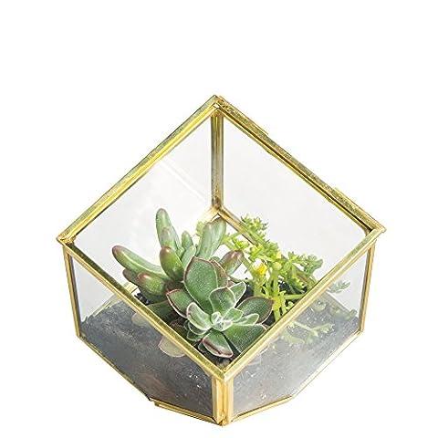 Copper Brass 10cm Squares Inclined Cube Clear Glass Geometric Terrarium