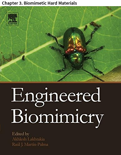 Engineered Biomimicry: Chapter 3. Biomimetic Hard Materials (English Edition) por Mohammad Mirkhalaf