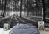 Wallsticker Warehouse Wald Landschaft Schwarz Und Weiß Vlies Fototapete Fotomural - Wandbild - Tapete - 368cm x 254cm / 4 Teilig - Gedrückt auf 130gsm Vlies - 2229V8 - Wald und Bäume