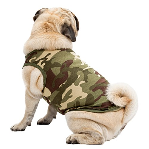(YiJee Hund Haustier Kleidung Hund Weste Atmungsaktiv Hündchen T-Shirts Grün L)