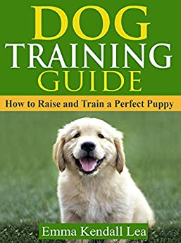 how to train the perfect dog