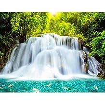 Suchergebnis Auf Amazon De Fur Wasserfall Wand