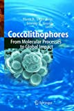Coccolithophores: From Molecular Processes to Global Impact