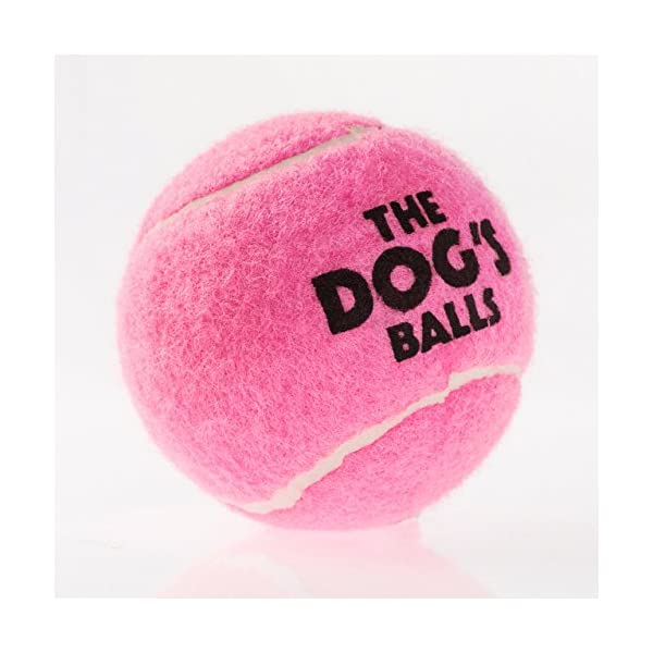 The Dog's Balls, Dog Tennis Balls in 3 Sizes, 4 Colors, Quality Dog Toys, Premium Strong Dog Ball 3