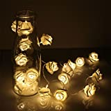 GEREE String Lights, 20 LED batteriebetriebene Rose Flower String Fairy Lights für Valentinstag, Hochzeit, Party, Indoor Dekoration, Warm White für GEREE String Lights, 20 LED batteriebetriebene Rose Flower String Fairy Lights für Valentinstag, Hochzeit, Party, Indoor Dekoration, Warm White
