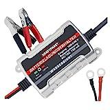 Dino KRAFTPAKET 750mAh-6V/12V Erhaltungsladegerät Batterieladegerät IP65 für KFZ Auto Motorrard Quad ATV Boot