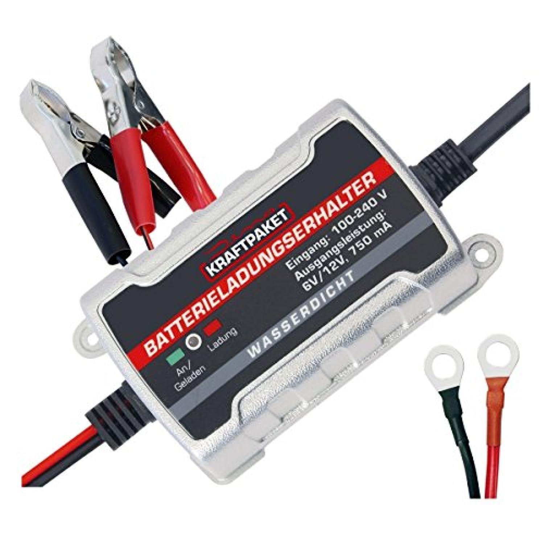 Dino Schnellstartsystem KRAFTPAKET 12 V Starthilfe avec Powerbank 400 A 9000m Ah 136103 Starthilfes