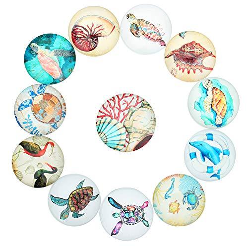 Weanty DIY Schmuck Set Zeit Edelstein Flachglas Marine Tier Perlen Kieselsteine Nuggets Cabochon Glas mehrfarbig 10 mm