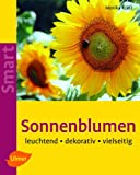 Sonnenblumen bei Amazon kaufen