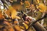 Fiskars Bypass-Gartenschere mit Rollgriff für frische Äste und Zweige, Antihaftbeschichtet, Hochwertige Stahl-Klingen, Länge 22 cm, Schwarz/Orange, PowerGear X, PX94, 1023628 - 5