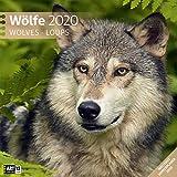 Wölfe 2020 Broschürenkalender