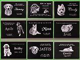Grabstein Hund 44x29x3 cm – schwarzer Granit inklusive Foto & Text Gravur nach Ihren Wünschen – Tiergrabstein Grabstein für Tiere Gedenkstein Haustier Tiergrabplatte für Hunde mit Bild Motiv Grabplatte Gedenktafel - 5