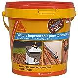 Sikagard Protection Toiture inclinée - Protection contre fuites et infiltrations d'eau - 1L - terre cuite