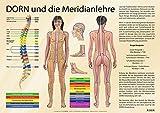Meridiane nach der MethodeDorn (Amazon.de)