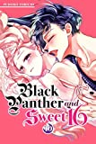 Black Panther and Sweet 16 Vol. 10 (English Edition)