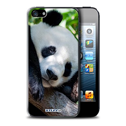 Stuff4 Hülle / Case für Apple iPhone SE / Faultier Muster / Wilde Tiere Kollektion Bär